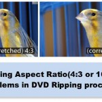 Get Aspect Ratio(4:3 or 16:9) Workaround in DVD Ripping process