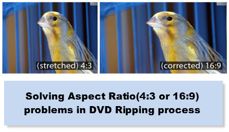 how to change vro aspect ratio