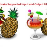 Video/Audio Formats Handbrake 1.0.0 Deals With