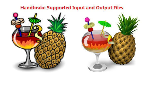 Handbrake Supported Files